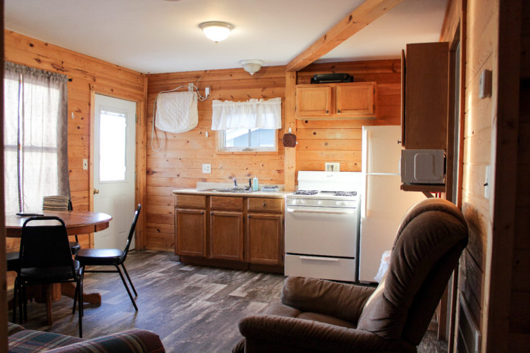 Cabin 1- Living Room- Kitchen